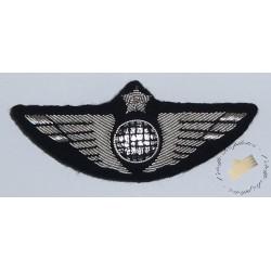 Insigne de poitrine aile avion Argent - Pour pilotes et copilotes, personnels navigants